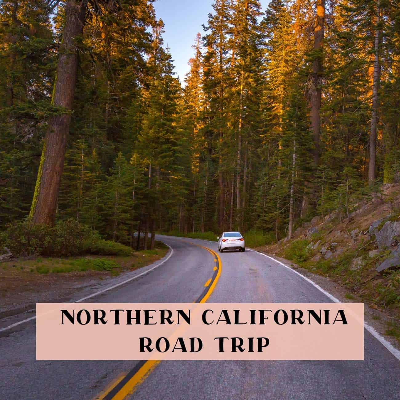 northern California drive itinerary