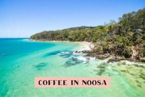 where to find the best coffee in Noosa