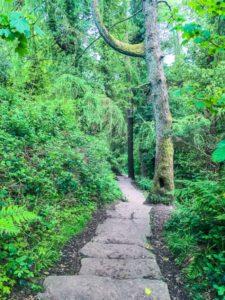 best short walks in Northern Ireland near Belfast