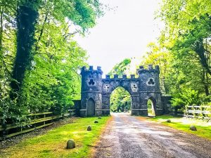 Tollymore Forest Park is one of the best places for short walks in Northern Ireland