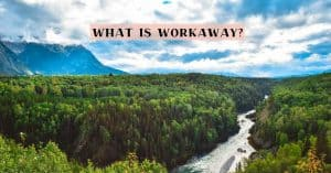 Workaway review