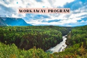 Workaway program