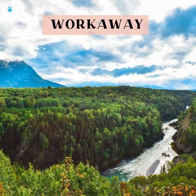 Workaway program tips