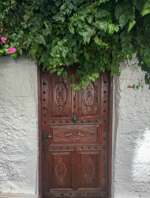 A beautiful wooden door with greenery and flowers overhanging