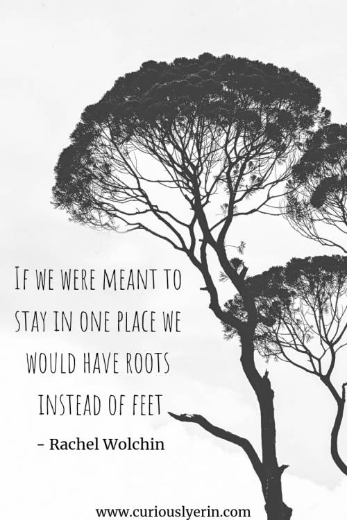 Travel Quote - If we were meant to stay in one place we would have roots instead of feet | Inspirational Travel Quote | Wanderlust Quote | Adventure Travel Quotes