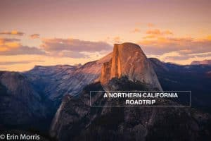 Northern California Road Trip