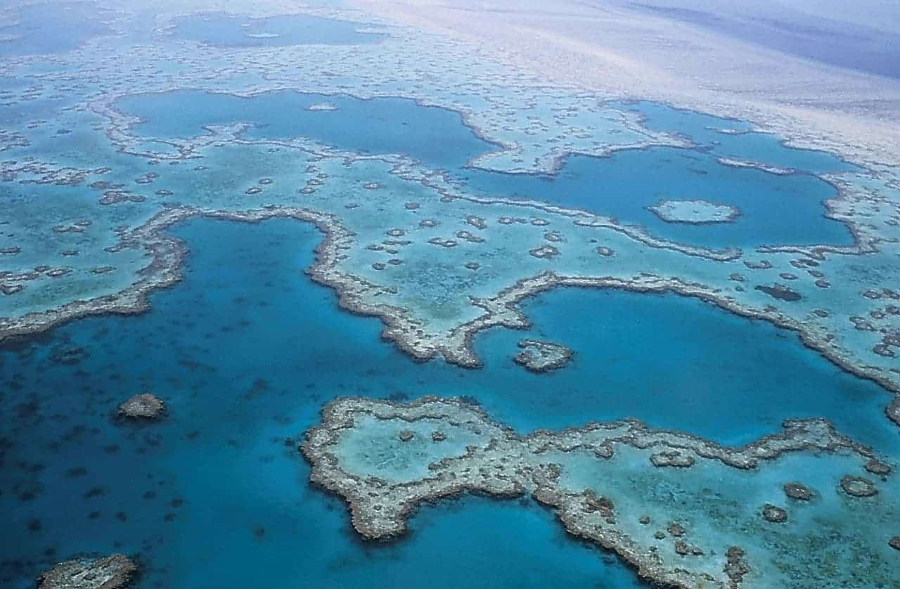 Island Jobs on the Great Barrier Reef