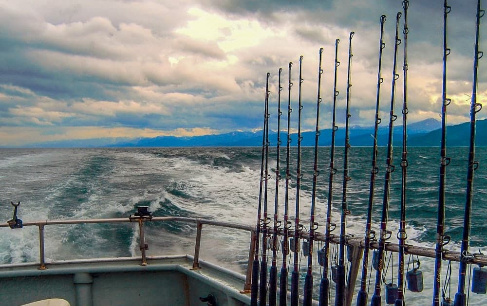 Enjoy a fishing charter and try to catch a halibut
