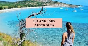 how to work on an island, Australia