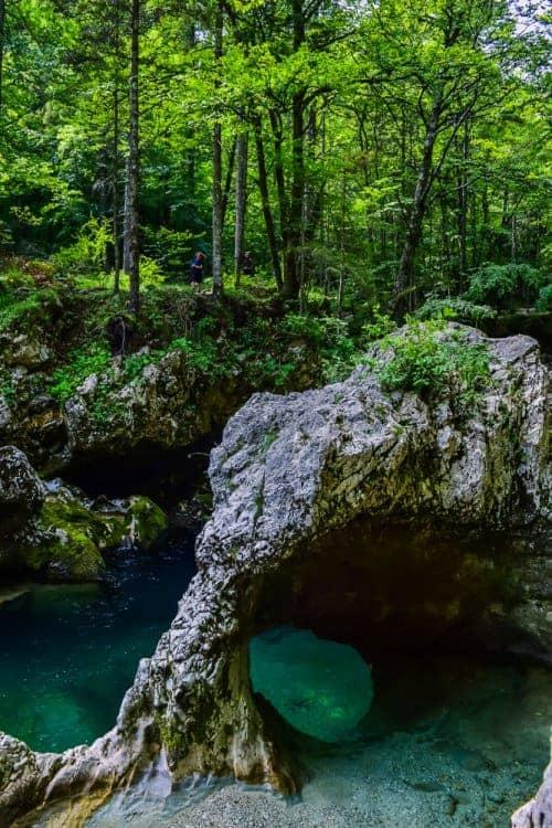 The little elephant in mostnica gorge Bohinj Slovenia