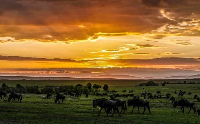 Sunrises in Africa