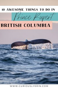 10 Things to do in Prince Rupert in Bristish Columbia, Canada. If you're looking for what to do in Prince Rupert look no further. Hiking in Prince Rupert is one of the best activities, there are plenty of museums and lots of animals and nature. Join a grizzly or fishing charter in Prince Rupert. #placestovisitincanada #roadtripsbritishcolumbia #britishcolumbiatravel #thingstodobritishcolumbia