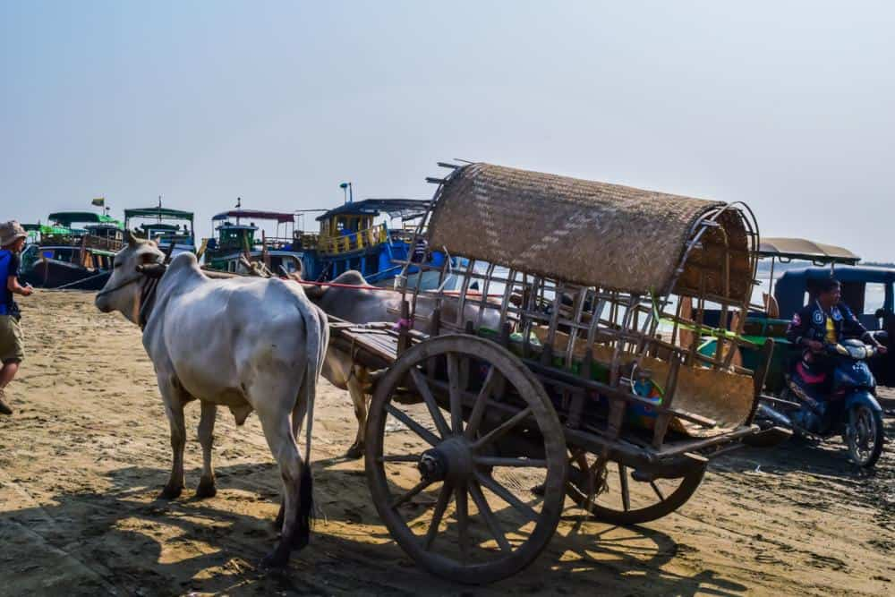 Cow drawn cart in Myanmar