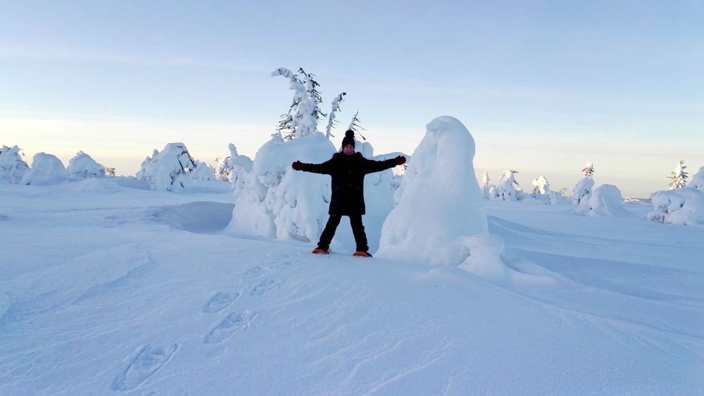 Snowshoeing Lapland in winter